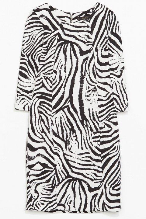 Free Printable Zebra Stripe Party Invitations