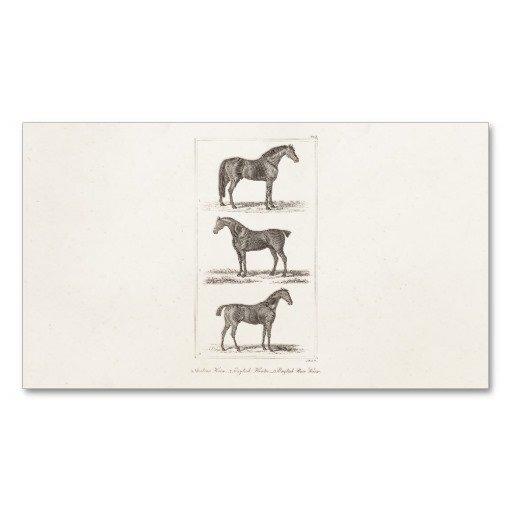 Race Horse Company Invitations