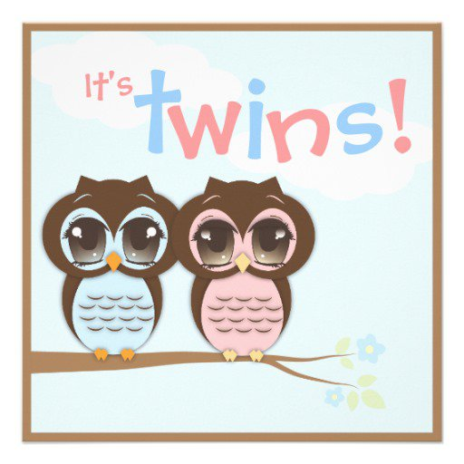 Boy And Girl Twins Baby Shower Invitations Of Owls