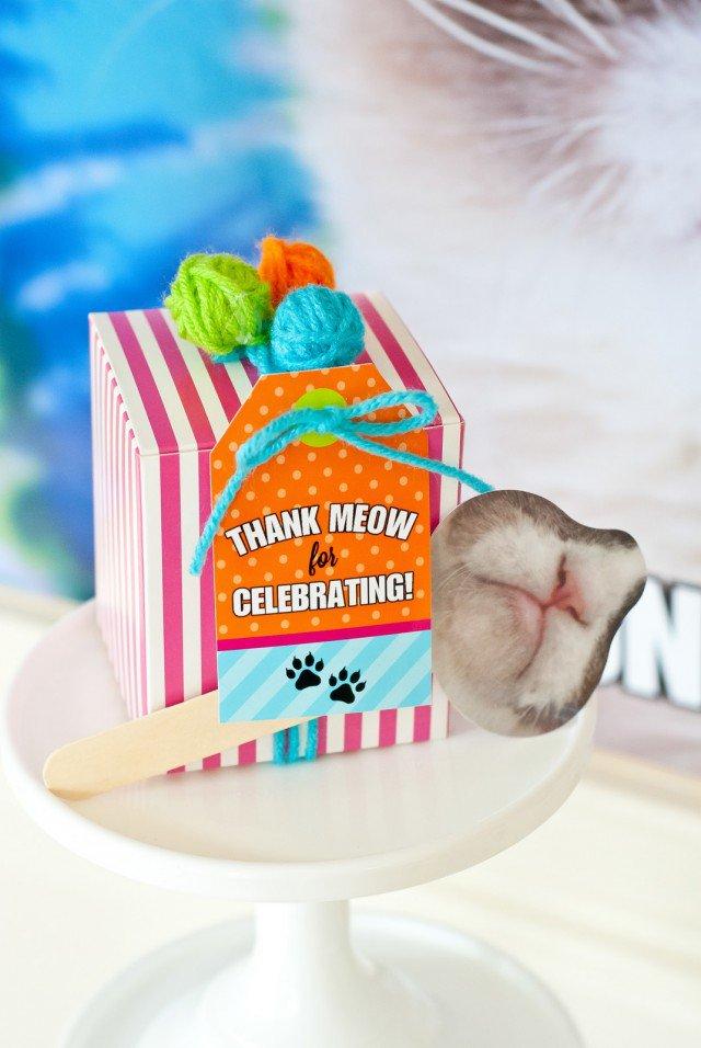 Grumpy Cat Birthday Decorations